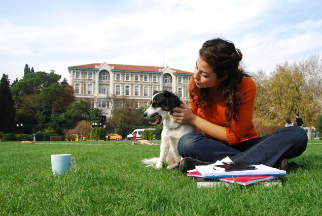 A girl and her dog on the quad