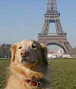 How do you say 'Woof' in French?