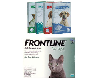 Pet owners should beware of counterfeit versions of Frontline and Advantage