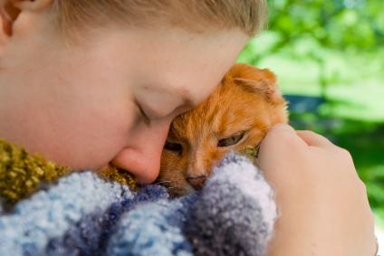 Consider adopting a cat.