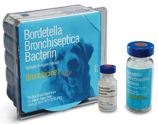 Pfizer offers a vaccine against bordatella (kennel cough).